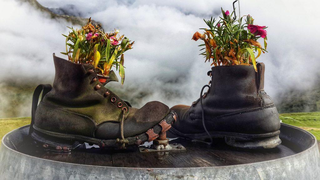 Recyclage chaussures pot de fleur
