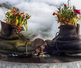 recyclage chaussure en pot de fleur