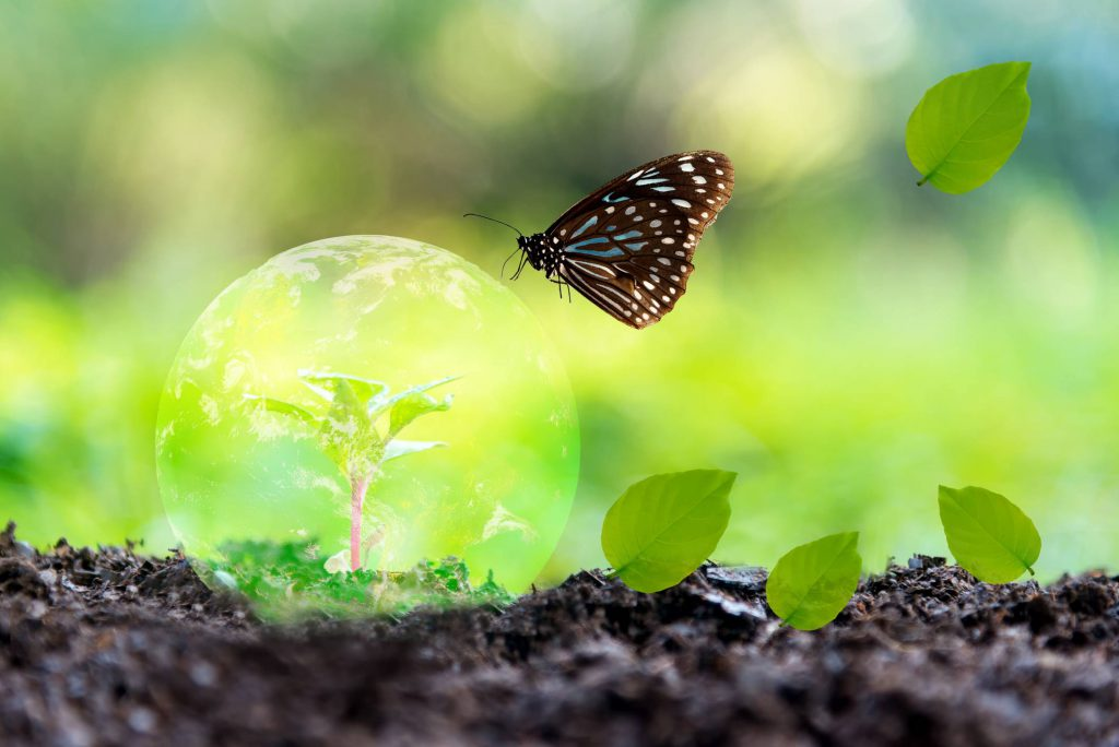 impact écologique cuir